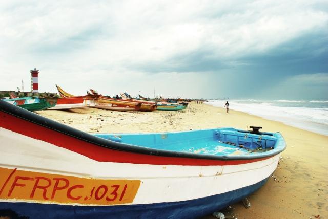 Boats by the marina